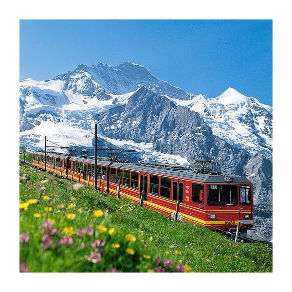 |카드할인 5%| 스위스패스 (연속 선택3일/4일/8일/15일) -1/2등석(성인/유스)무료배송 상품이미지