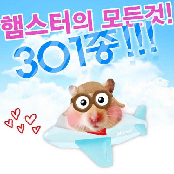 햄스터용품301종/사료/간식/집/장난감/베딩/쳇바퀴/볼 상품이미지
