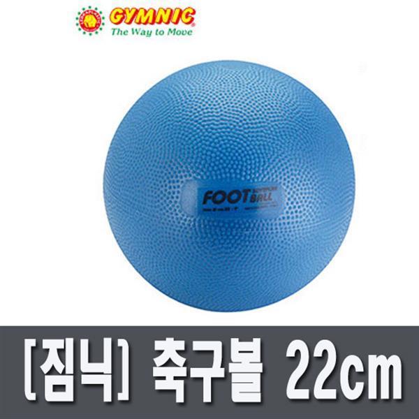 Gymnic 짐닉  짐닉스포츠-축구볼 22cm(블루)(B-EN-821 상품이미지