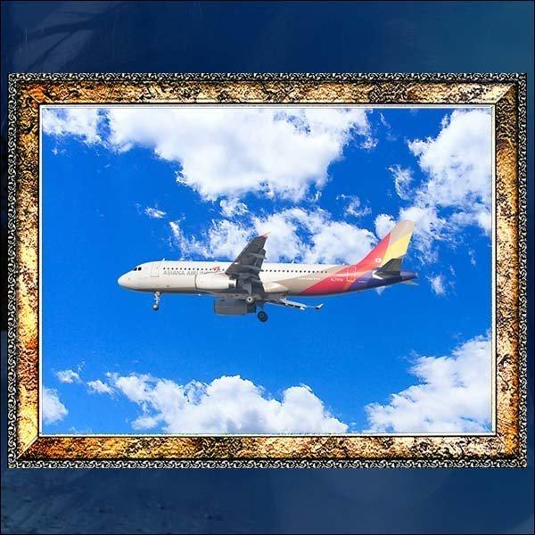 A308/비행기사진액자/여객기사진/사진액자/벽걸이액자 상품이미지
