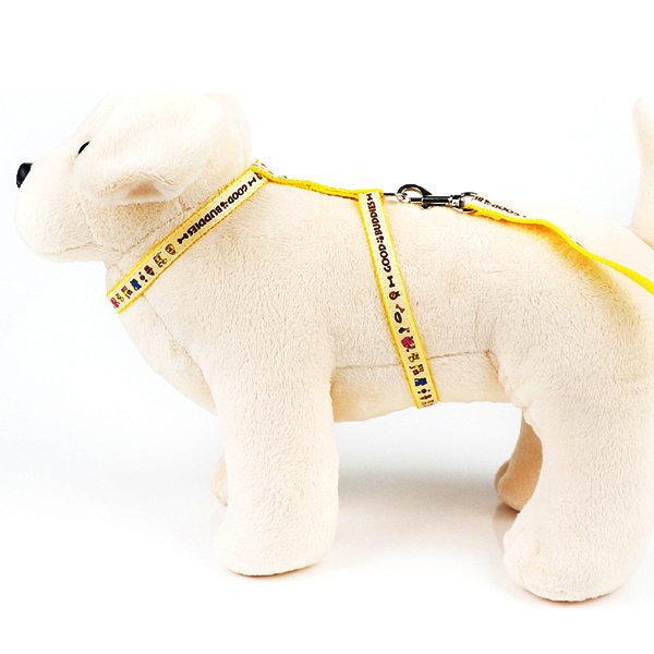 굿버디 고양이줄 세트 10mm/하네스 고양이 목줄 상품이미지