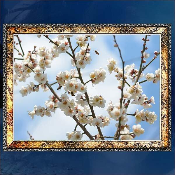 A296/벌사진액자/꽃사진액자/풍경화액자/벽걸이액자 상품이미지