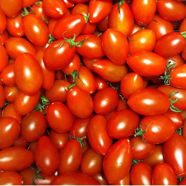 탱글탱글 대추방울토마토 5kg 3-4번 상품이미지
