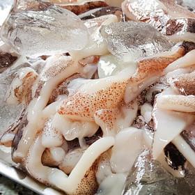 고퀄리티 오징어채 정품수협 절단오징어 500g