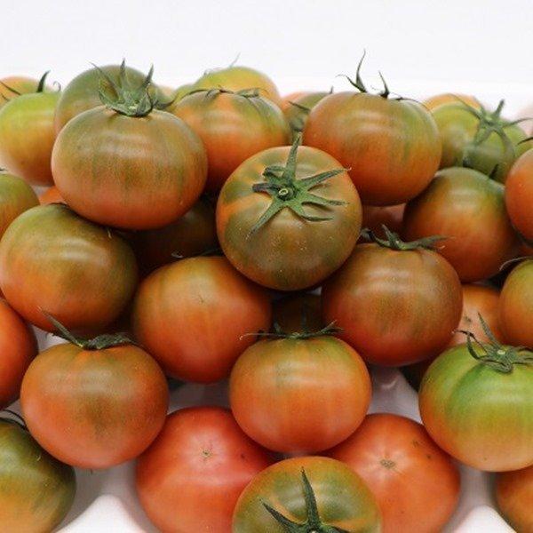 강서 도매시장 Top Fruit  대저토마토 짭짤이 5kg 상품이미지