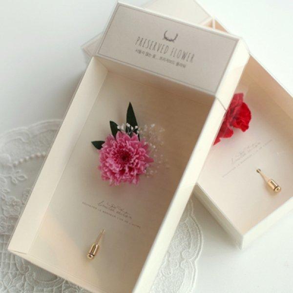 디비디 프리저브드 플라워 - Carnation 상품이미지