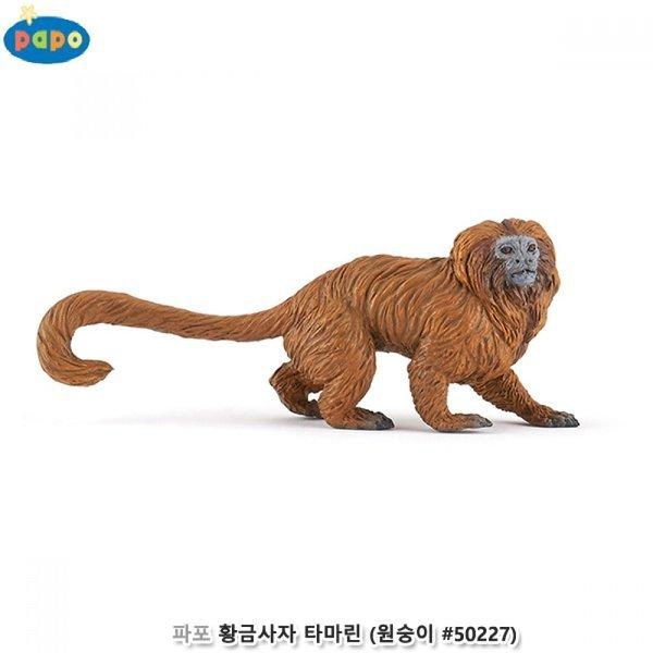 파포 (동물 모형완구) 황금사자 타마린 ( 50227) 상품이미지