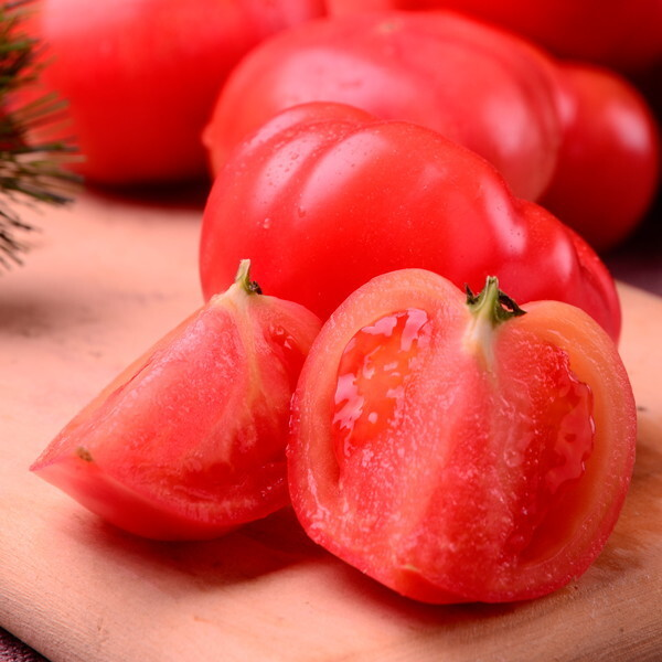 감동  찰 토마토 5kg 4-5번 소과 상품이미지