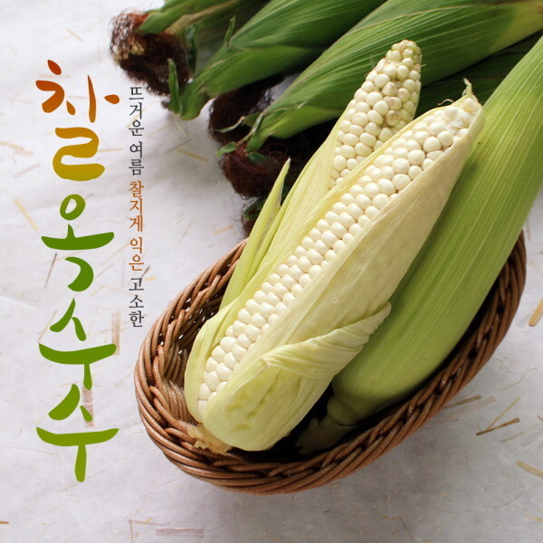농부마음  당일수확 발송중 햇 찰옥수수 17cm내외 특품 25개입 상품이미지