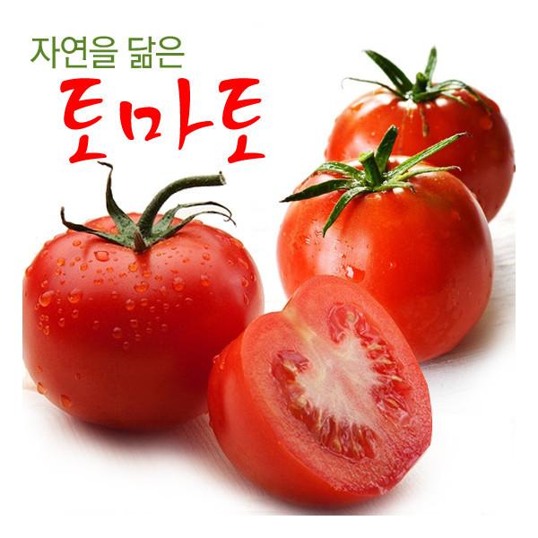 명가일품  자연을 닮은 전라도 토마토 정품 5kg (4-5번과) 상품이미지