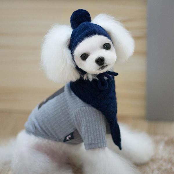 치펫 강아지 고양이 니트모자 목도리 세트 상품이미지