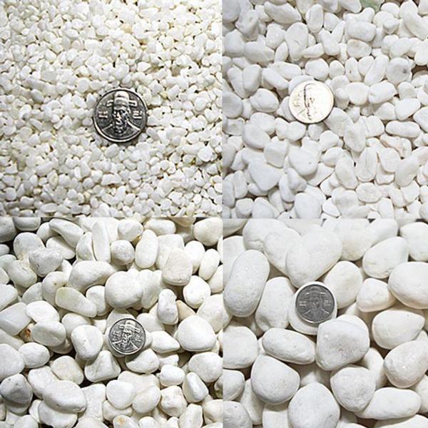 백자갈 3kg전후 0호-7호(칼라원석 어항 화분 미술재 상품이미지