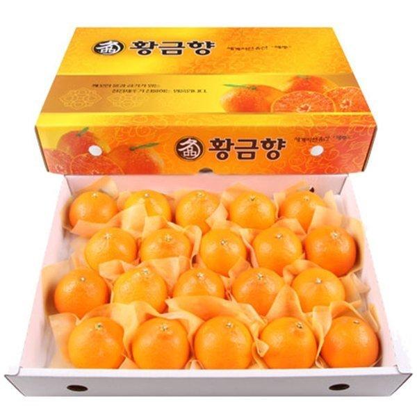 1무료배송 제주 황금향 5kg 특대(18~22과)/제주도직송 상품이미지