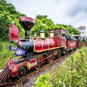 제주 에코랜드 테마파크 입장권 / 기차여행