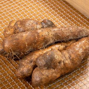 태산농장 안동 참마 산마 알뜰 3kg