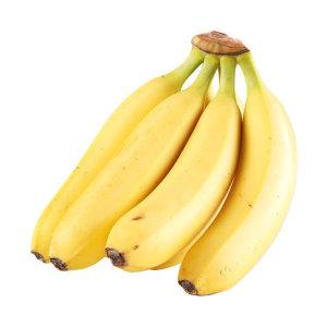 바나나 필리핀  반송이
