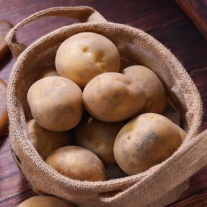 포근포근  2020년 수확 수미 햇감자 10kg (특)