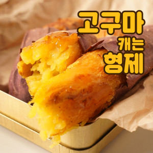 고구마캐는형제 서산황토꿀고구마 중 5kg (60g-120g)