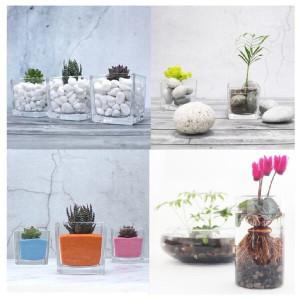[화분월드] 자갈/색돌/색모래/돌/조경 수족관 화분 분갈이흙