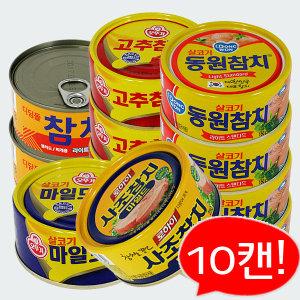 참치 x 10개 모음전 /오뚜기/동원/사조/고추참치
