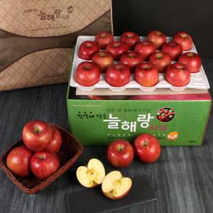 청송꿀사과 10kg(36-38과)중소과/햇부사 미시마