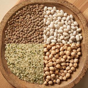 [현대농산] 2020년산 병아리콩4kg/갈색렌틸콩/귀리/햄프씨드 선택