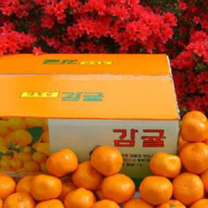 하우스 귤 10KG 15KG 한라산농장 (불만시 반품가능)