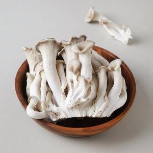 친환경 옛느타리버섯 팩
