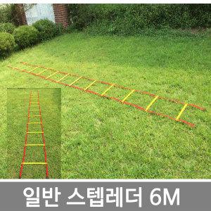 젤존 스텝레더 6m/훈련사다리 축구 학교체육/젤존