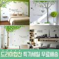 포인트스티커 시트지 벽지 인테리어소품 /이케아