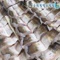 통영 자연산 바다장어5kg/7~9인분/캠핑용/산지직송