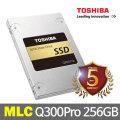 공식판매점//SSD Q300 PRO 256GB /5년무상A/S