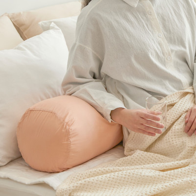 AIRE/Pure Cotton/Allergy Care/Large Cushion/Zip Type/Body Pillows