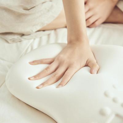 [ARAHOME] CoZam Pillow Standard/Neck support pillow/Memory Foam