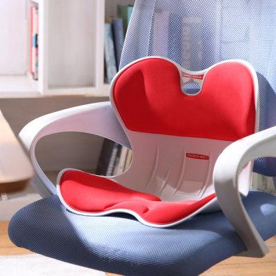 ROICHEN Posture Correction Chair (Men`s/Women`s)