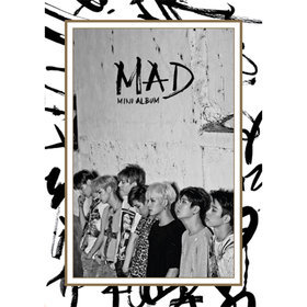 미니4집 MAD VERTICAL ver.