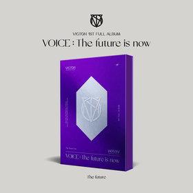 The future ver.